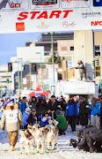 Iditarod2015_0318.JPG