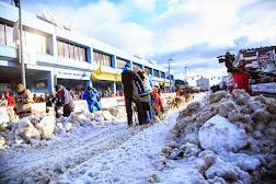Iditarod2015_0230.JPG