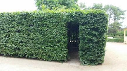 Labyrinth an der Promenade Zinnowitz