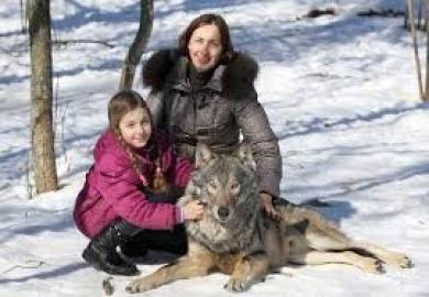 Домашний волк