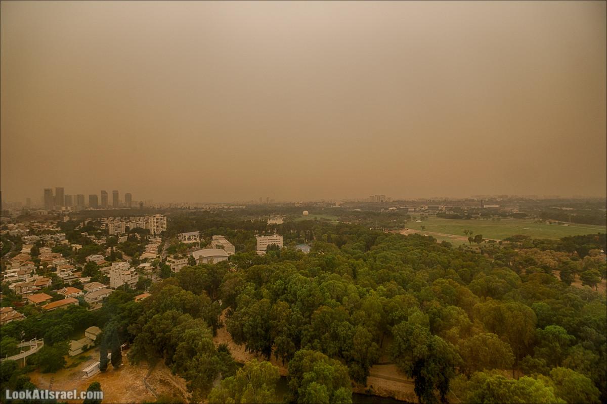 Желтое песочное утро в Израиле | Yellow Sand morning of Israel | LookAtIsrael.com - Фото путешествия по Израилю