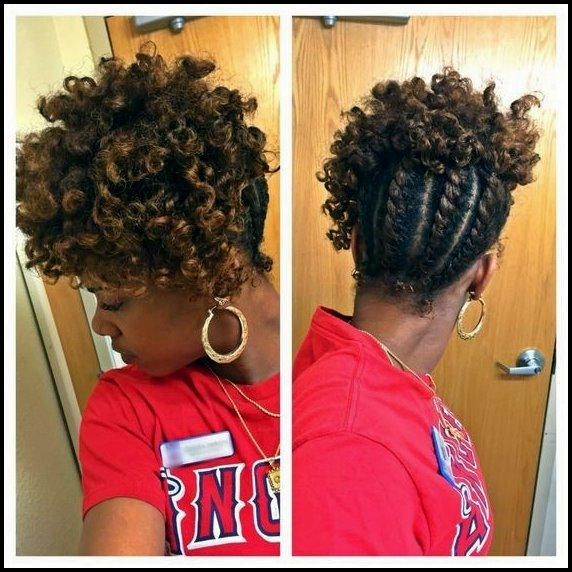 2018 Chic African American Braids For Women The Hot New Look 5