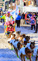 Iditarod2015_0400.JPG