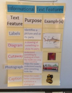 Below is  photograph of our anchor chart and examples completed work in informational text feature books this week we will continue to learn about also ms larose   nd grade features rh larose ndgradespot