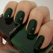 nail polish illamasqua