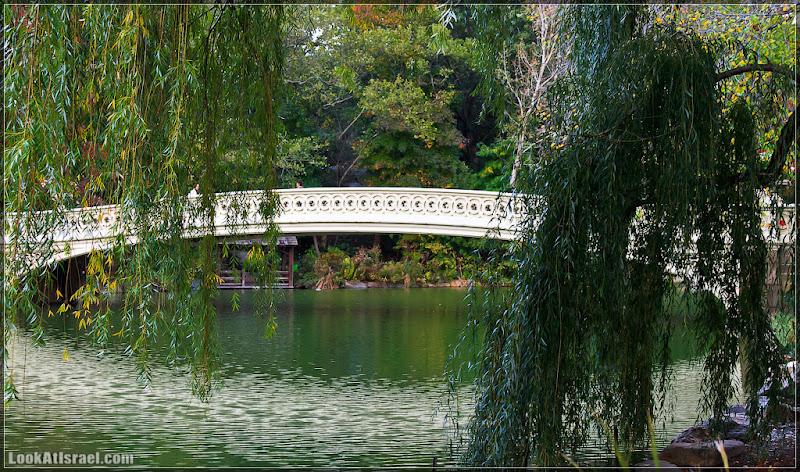 Америка 2.0 / Нью Йорк, Central Park