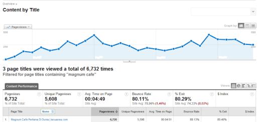 Hasil Data Google Analytics