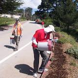 IVLP 2010 - Volunteer Work at Presidio Trust - 100_1422.JPG