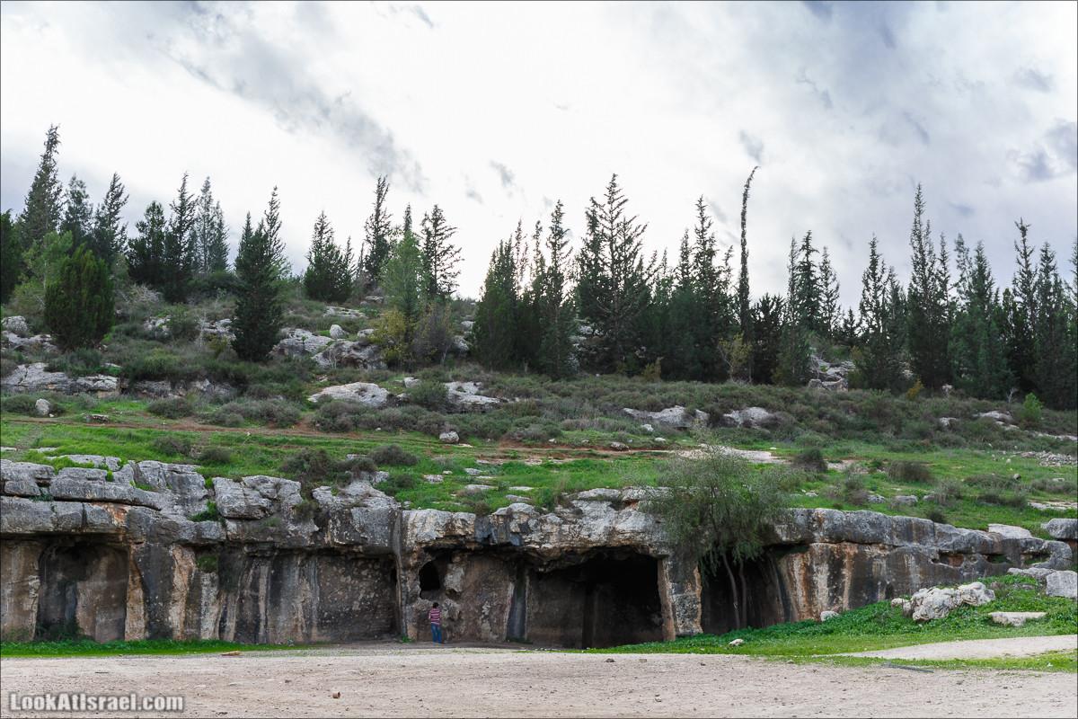 Лес Бен Шемен | Ben Shemen Forest | סודות של עיר בן שמן | LookAtIsrael.com - Фото путешествия по Израилю