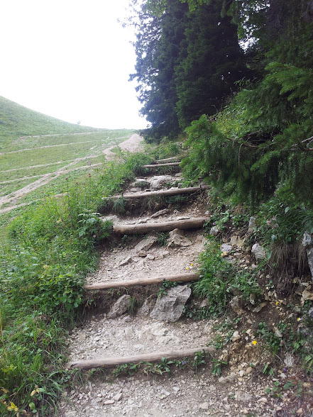 Blick auf die nach oben Richtung Tegelberg führenden Stufen