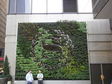 jardín vertical  jardines verticales green wall ecosistema vertical cuadro vegetal vertical garden colorado denver UE america