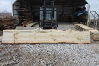 "Tulip Poplar 134-6  2 1/4"" x 30"" - 24"" Wide x 16' Long  Kiln dried"