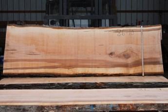 """086 - 10 Hard Maple  2 1/4"""" x 32 - 30"""" Wide x 9' Long  Kiln dried"""
