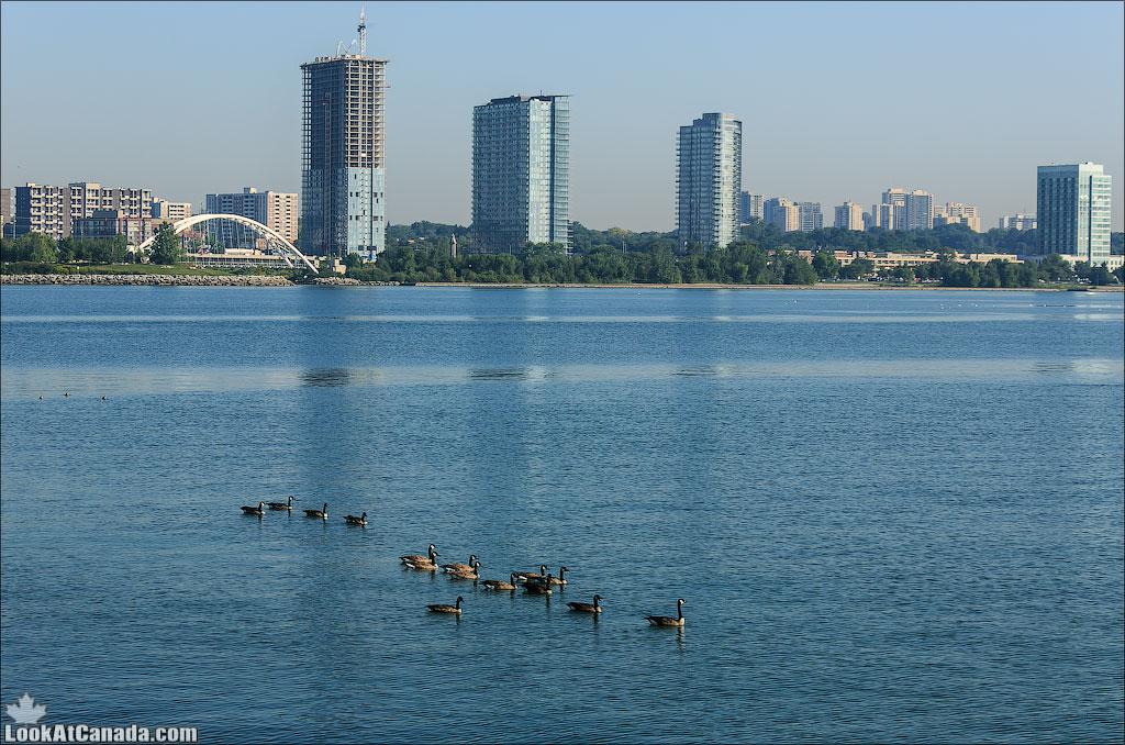 LookAtCanada.com / Парк Humber bay в Торонто | LookAtIsrael.com - Фотографии Израиля и не только...