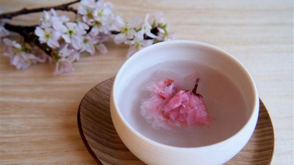 Sakurayu (桜湯) - 7 Bebidas Tradicionais Japonesas Para Você Experimentar