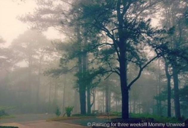 Rainy Baguio City