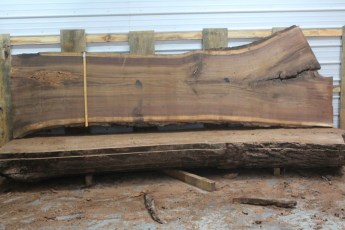 Walnut 215-6  Length 12' Max Width (inches) 50 Min Width (inches) 31 Notes 10/4 Kiln Dried