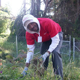IVLP 2010 - Volunteer Work at Presidio Trust - 100_1406.JPG