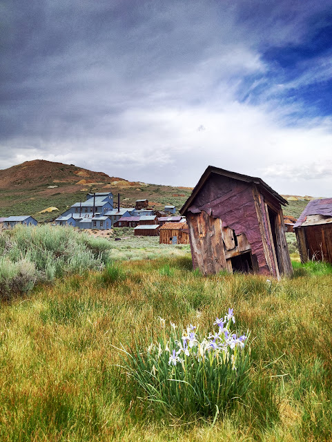 An abandoned outhouse in Bodie