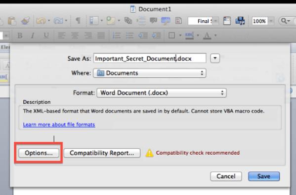 Microsoft Word Save As… box
