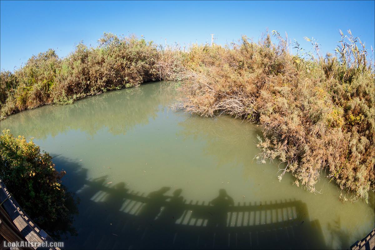 Дорога акведуков - от крокодиловой речки в Кейсарию   LookAtIsrael.com - Граффити Тель Авива   Tel Aviv street art