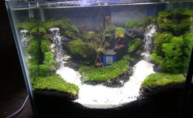 Cara Membuat Air Terjun Untuk Aquarium Aquascape Youtube Cute766