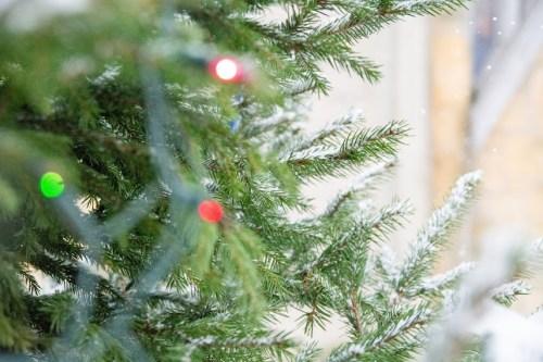 DSC 1991 White Christmas!