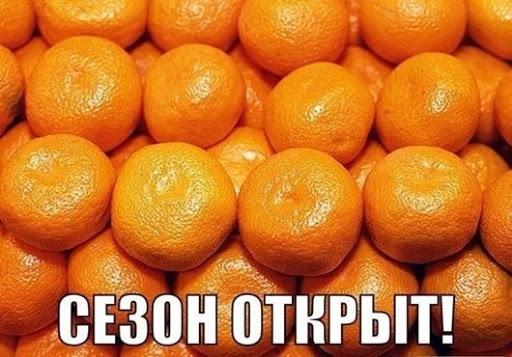 dlyakota.ru_foto-prikoly_nemnogo-yumora-13112013_1