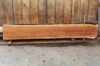 "440 Cherry -2 2"" x 19"" x 18"" Wide x 10' Long"
