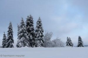 Winter-2011