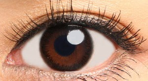 アイメイク eyemake アイメイクワンデー画像1