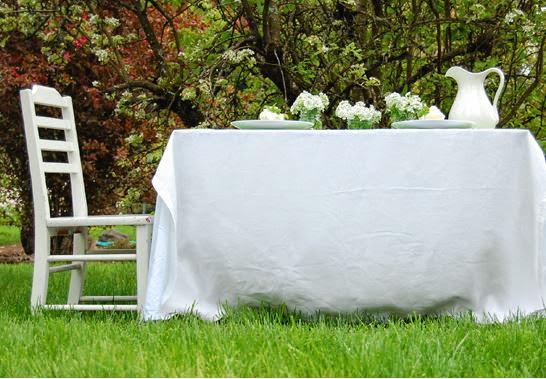 Mesa de verano en el campo.