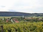 In den Weingärten