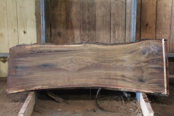 "579  Walnut -3 10/4 x 35"" x  28"" Wide x  8'  Long"