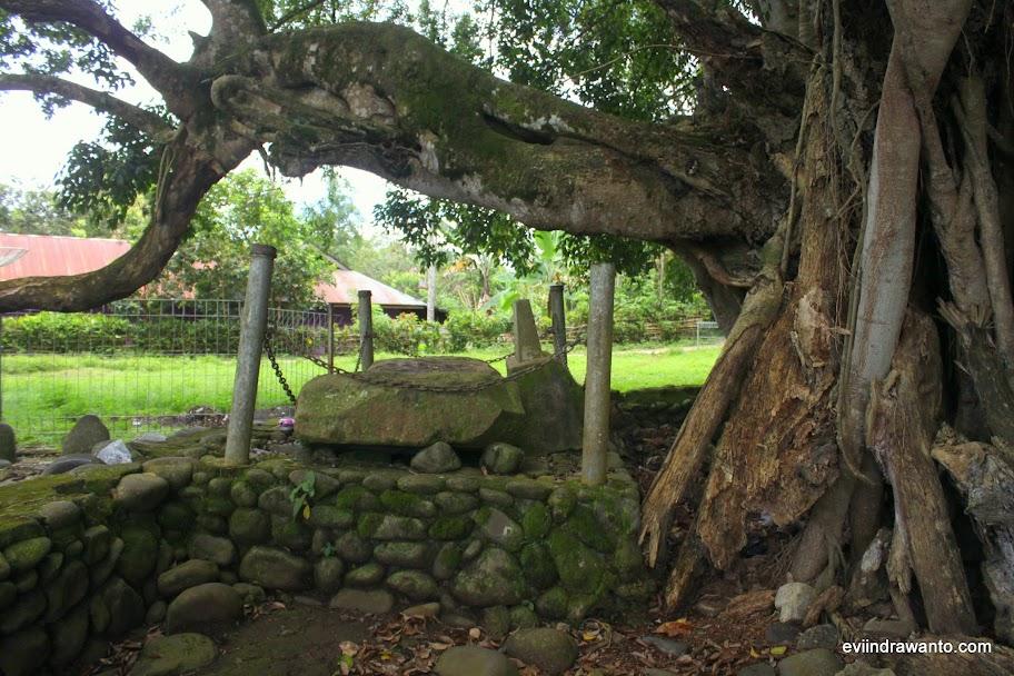 Batu Kasur di bawah pohon beringin sakti
