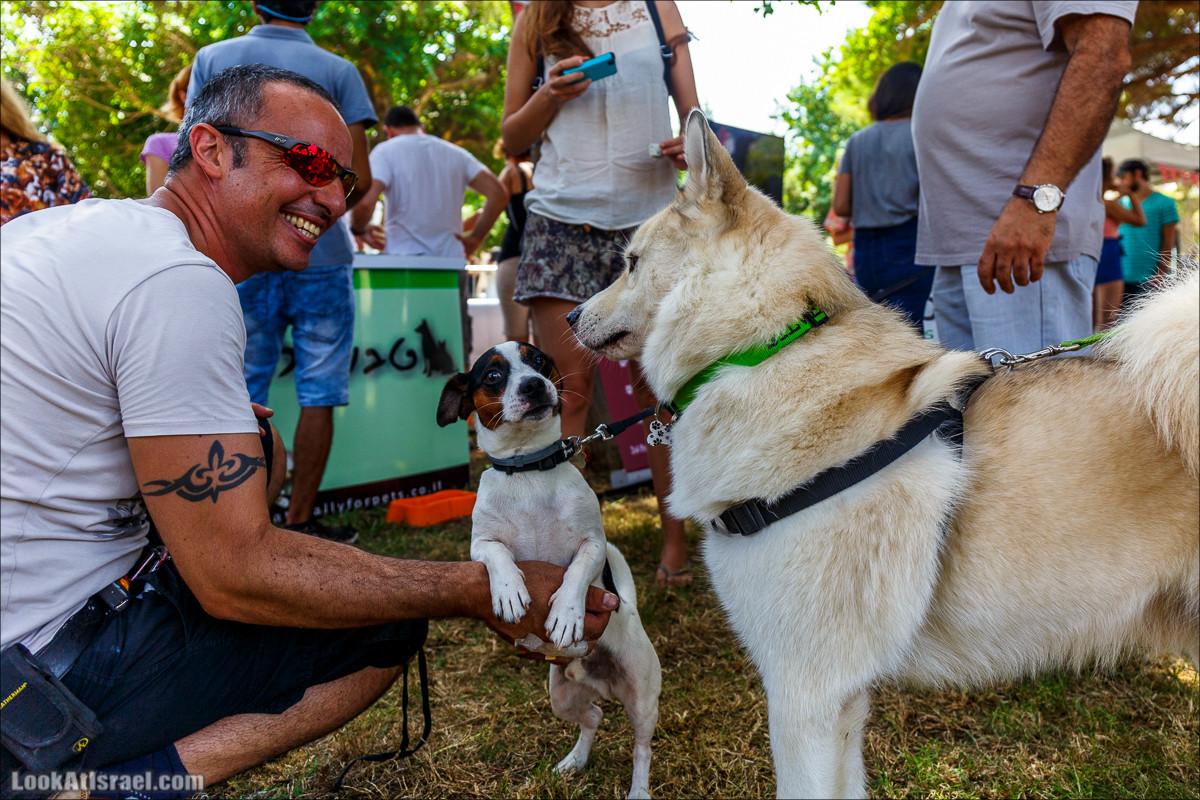 Келавив - День Собак в Тель-Авиве