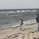 Strandstädning - _MG_4073.JPG