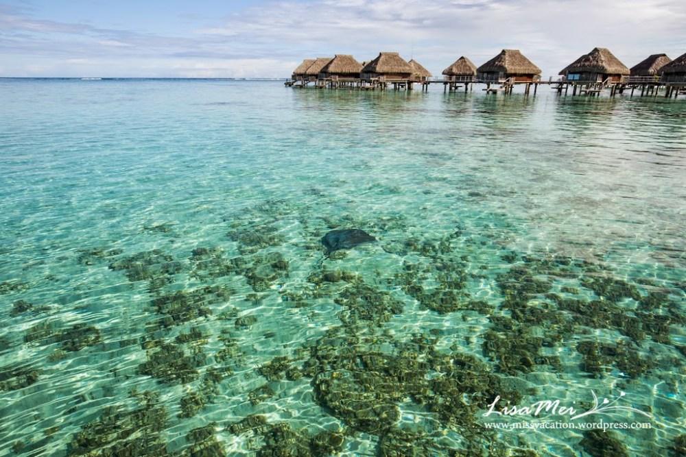 Bora Bora: It's Real! (6/6)