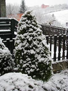 u snijegu