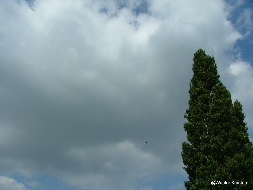 Westhoek 22 en 23 juni 2009 - DSCF8326.JPG