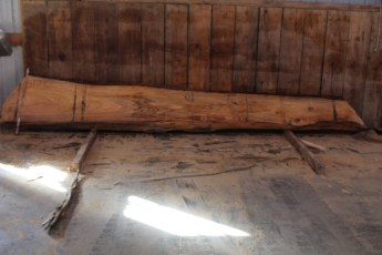 "517 Cypress -10 10/4  x  25"" x  12"" Wide x 16' Long"