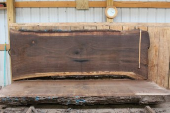 "507 Walnut -8 12/4  x  47"" x  39"" Wide x 10' Long"