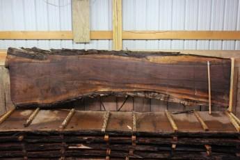 "Walnut 383-1  2 1/2"" x 34-21"" Wide x 12' Long  Kiln Dried"