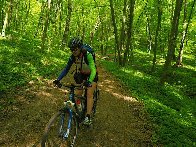 вишнева гора, доріжка в лісі