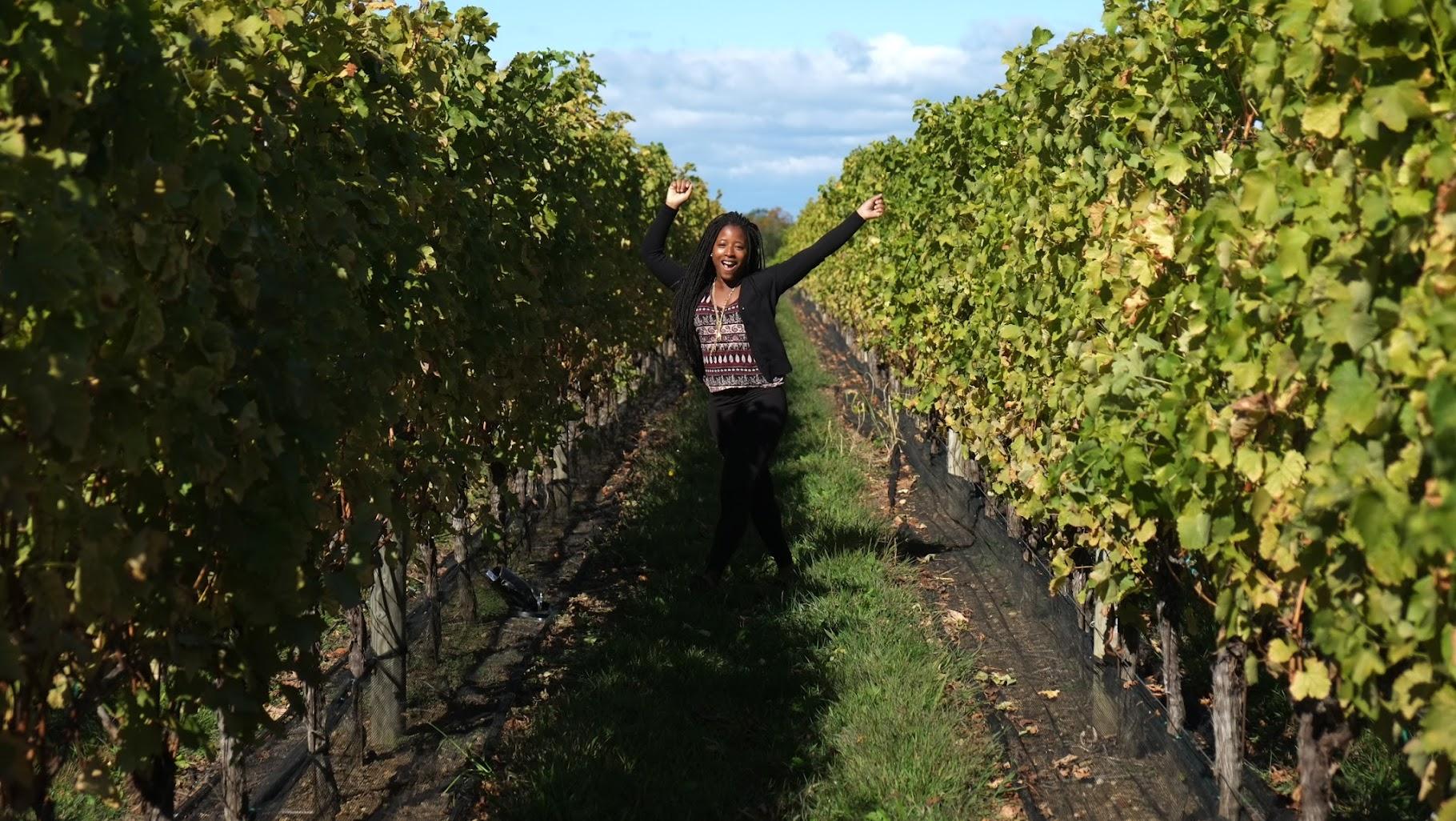 Cultural Xplorer at Long Island Winery