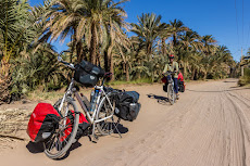 Cycling along the Nile, lined with green palm trees