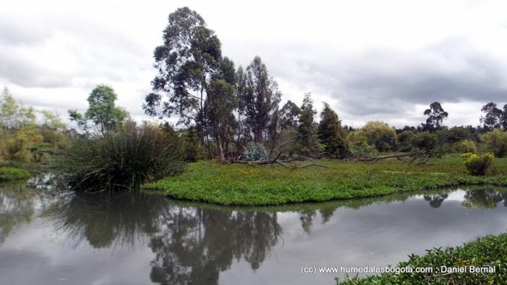 Humedal La Conejera, sector por donde pasa la Av ALO