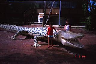 0560NT Crocodile Farm