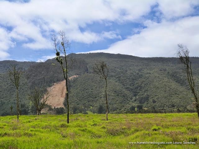 Cerros de Torca