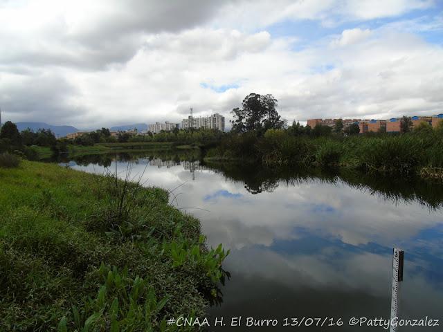 Espejo de agua en el humedal El Burro